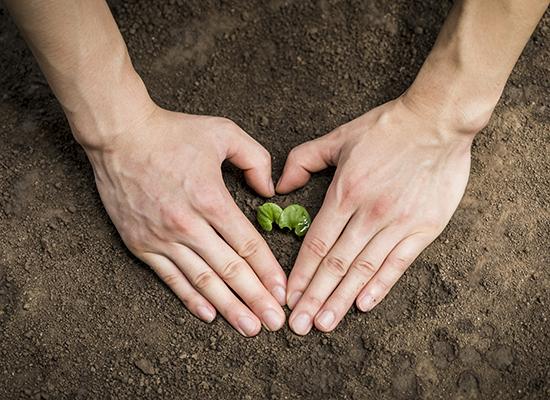土壤修复工程