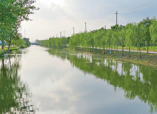 城乡水污染综合治理
